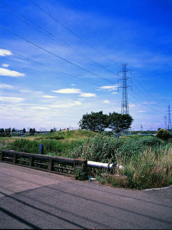 田んぼは青々と。坂川は水田地域へ~GA645WとDP1xでめぐる坂川~_c0223825_2512937.jpg