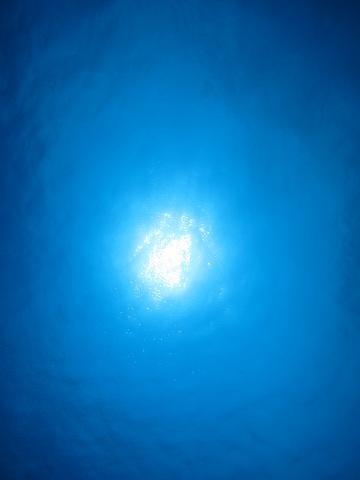 慶良間体験ダイビングコース☆_a0156273_19541960.jpg