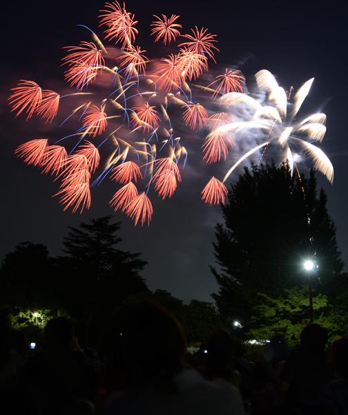 花火写真~心のシャッターよりカメラのシャッターを_e0171573_1575299.jpg