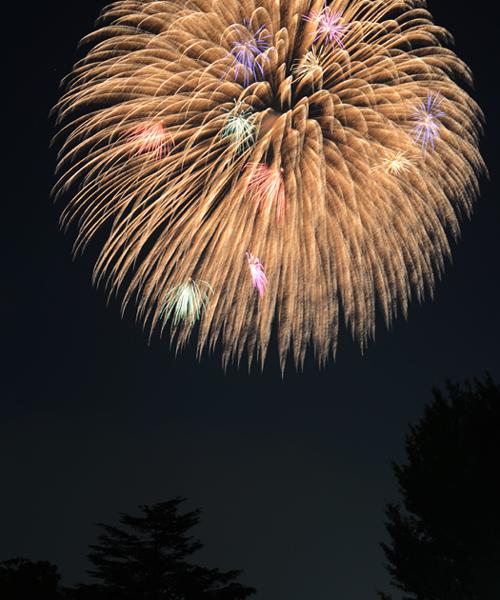 花火写真~心のシャッターよりカメラのシャッターを_e0171573_1582764.jpg