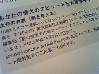 Shi-Ba期間限定キャンペーンだよ_b0011075_9494464.jpg