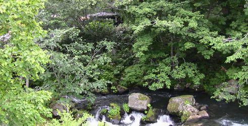 北海道 その5_d0020180_1736123.jpg