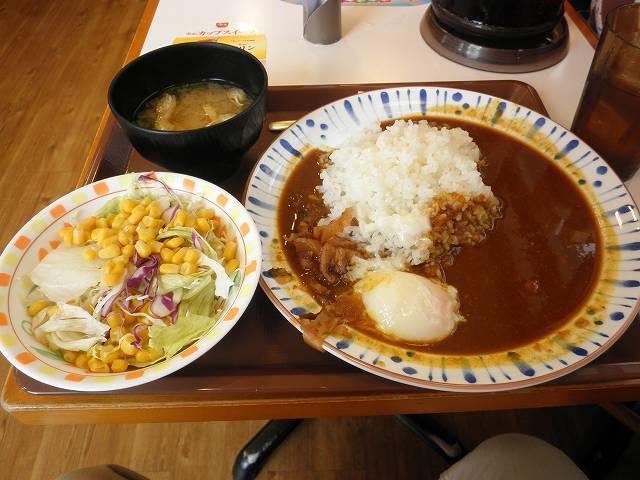 すき家の新カレー   東大阪加納店_c0118393_9375269.jpg