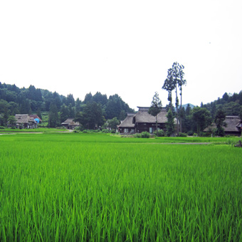 旧高柳町「荻ノ島集落」の民家の実測調査に行ってきました(その1)。_c0195909_16443950.jpg