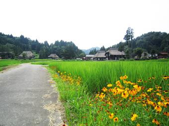 旧高柳町「荻ノ島集落」の民家の実測調査に行ってきました(その1)。_c0195909_16444364.jpg