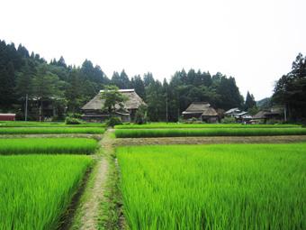 旧高柳町「荻ノ島集落」の民家の実測調査に行ってきました(その1)。_c0195909_16445068.jpg