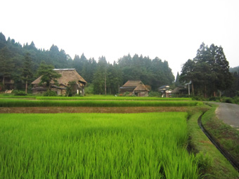 旧高柳町「荻ノ島集落」の民家の実測調査に行ってきました(その1)。_c0195909_16451380.jpg