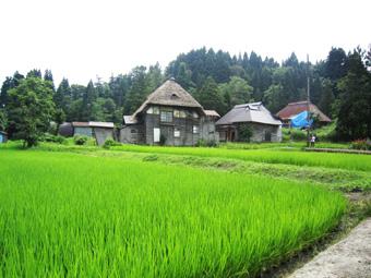 旧高柳町「荻ノ島集落」の民家の実測調査に行ってきました(その1)。_c0195909_1645165.jpg