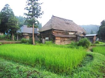 旧高柳町「荻ノ島集落」の民家の実測調査に行ってきました(その1)。_c0195909_16451690.jpg