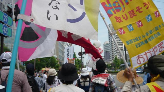 「岡山デモ~放射能汚染のない日々を希望する行進~」に参加しました。_d0155415_16484.jpg
