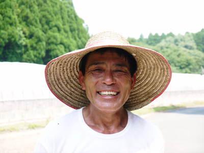 熊本スイカ 2回目はあえて自根栽培_a0254656_19135793.jpg