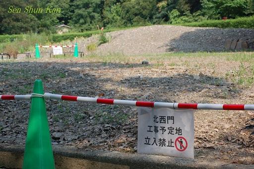 植物園 2012年夏_a0164068_16521674.jpg
