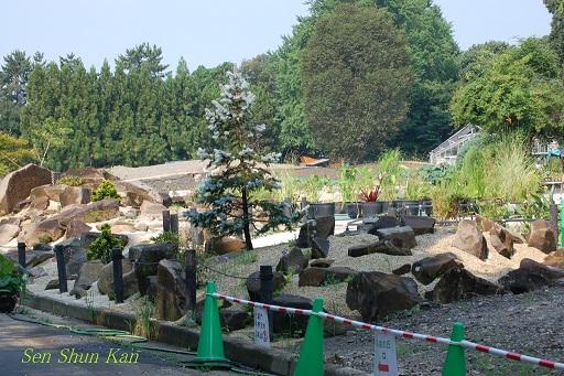植物園 2012年夏_a0164068_16524857.jpg