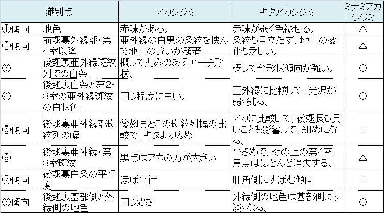 類似☆ アカシジミ × キタアカシジミ  翅裏比較図Ver.1.1 _a0146869_6271872.jpg