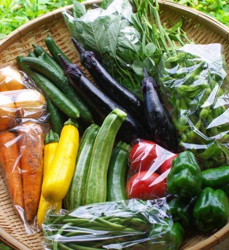 今週の野菜セット(7/31~8/4着)_c0110869_22453245.jpg
