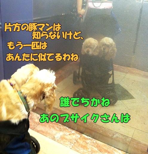 b0067012_18592568.jpg