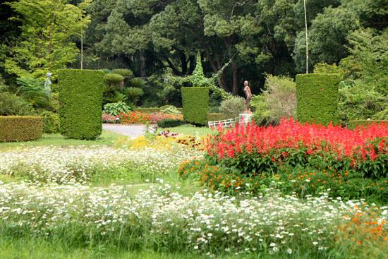 夏の植物園2_e0048413_20502554.jpg