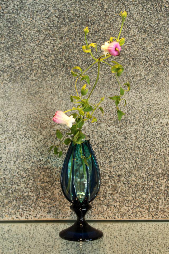 花を生けると_c0237627_2140126.jpg