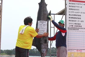 浜松ビルフィッシュトーナメント2012 ③ 【カジキ・マグロトローリング】_f0009039_1442243.jpg
