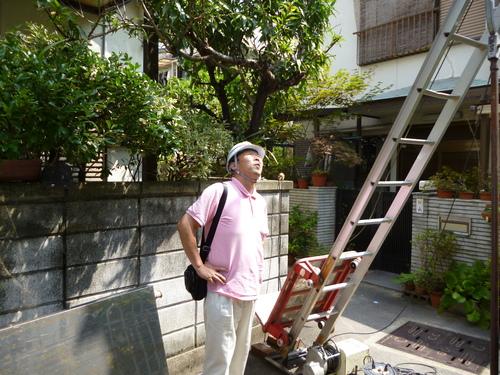 ソーラー撤去工事_e0184941_14501357.jpg