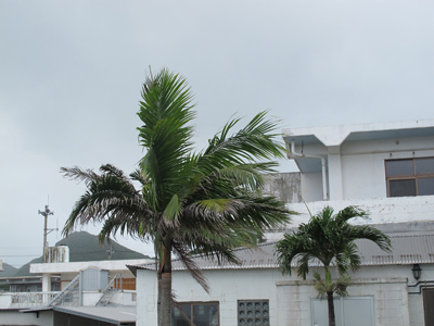 7月31日 嵐の前_b0158746_1428389.jpg