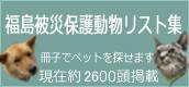 b0058956_10211947.jpg