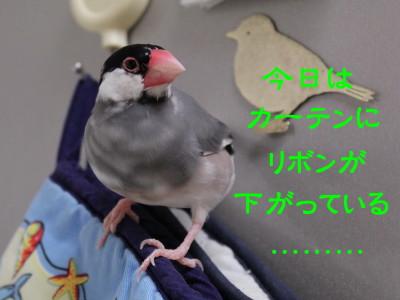 b0158061_21391962.jpg