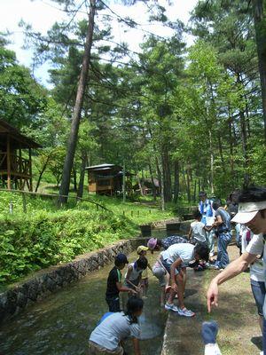 木曽川さんありがとう_c0013065_2240517.jpg