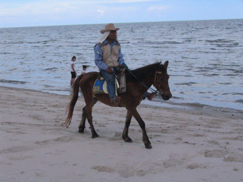 BEACH              ~ チャームビーチ_d0103566_2340156.jpg