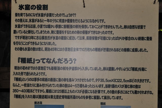 材木岩氷室〈ヒムロ)_b0223668_639539.jpg