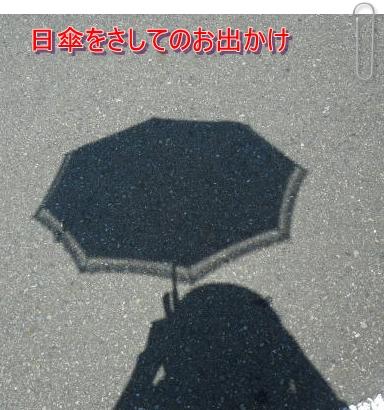 b0078675_1144267.jpg