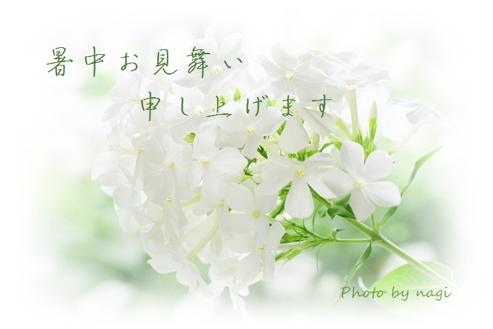 b0136812_14434564.jpg