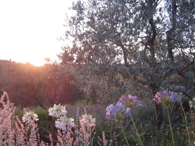 イタリア・トスカーナ/Toscane en Italie_d0070113_24138.jpg