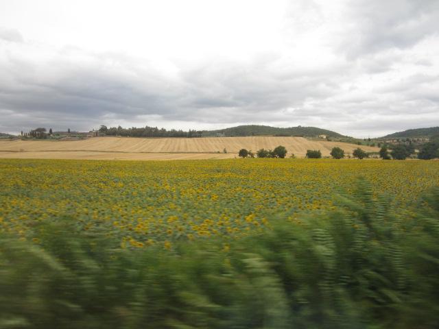 イタリア・トスカーナ/Toscane en Italie_d0070113_2531138.jpg