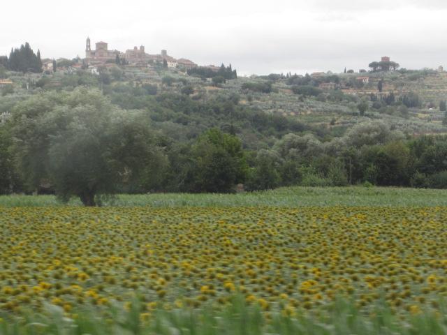 イタリア・トスカーナ/Toscane en Italie_d0070113_2531871.jpg