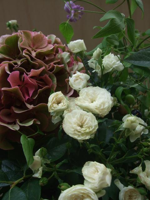 オークリーフ(紫陽花とバラとクレマチスのアレンジメント)_f0049672_13104949.jpg