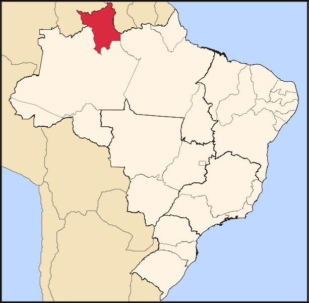 ◆ブラジルで一番北に住んでいる日本人<O Japonês que mora ao norte do Brasil>_d0171192_7425182.png