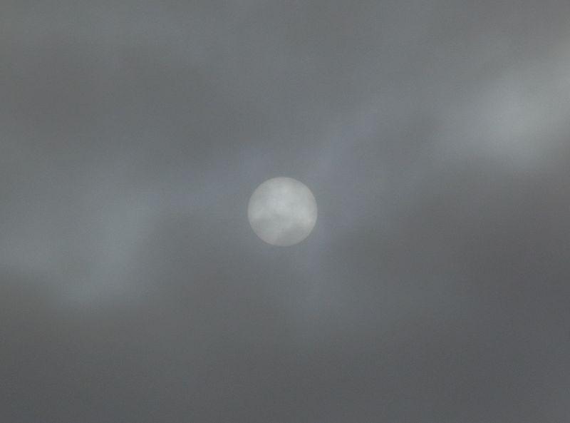 一気に寒空の札幌へ_c0025115_2005069.jpg