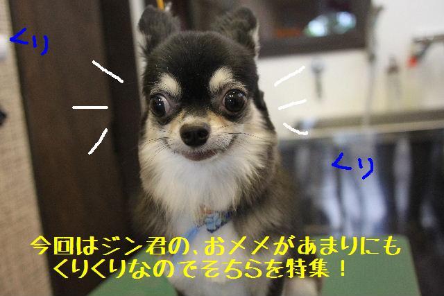 b0130018_22545552.jpg
