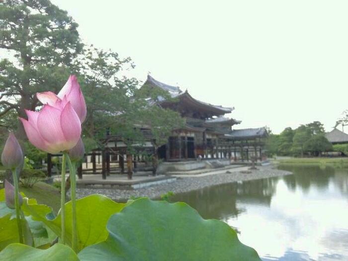 京都~滋賀へ_c0160822_10145676.jpg