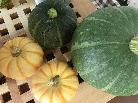 野菜 野菜 野菜・・・♪ 8/2①_b0247223_17412868.jpg