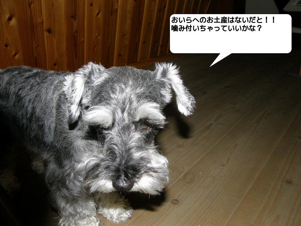 c0141933_126948.jpg