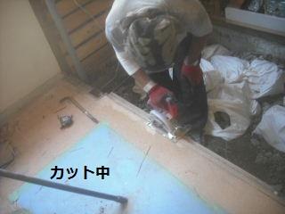 解体とごみ処理と・・・_f0031037_21104360.jpg