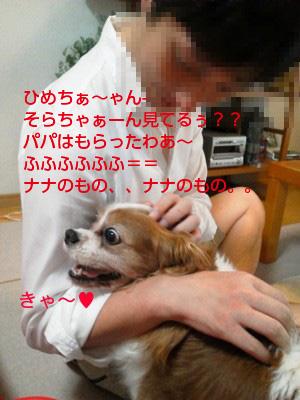 d0146341_179875.jpg