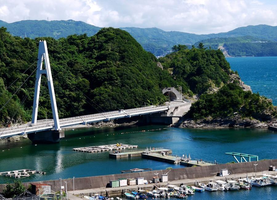 新和歌浦から雑賀崎へ_b0093754_23382952.jpg