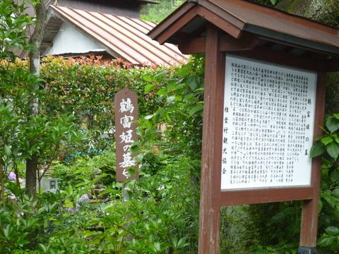 鶴富姫の墓と看板犬(^^)_b0228113_9401824.jpg