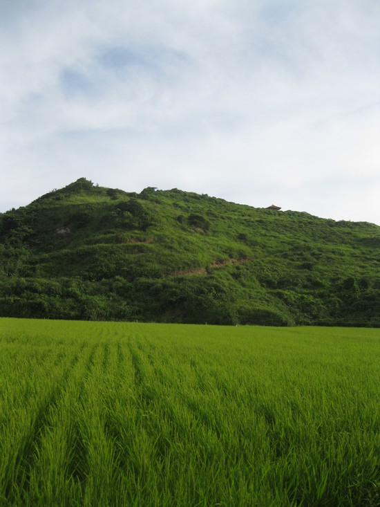 「2012 F,G鷹島2日目」☆_a0125419_8523198.jpg