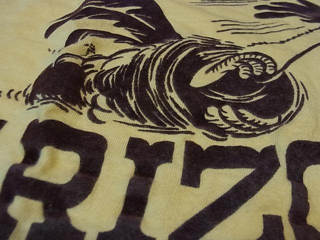 8/4(土)入荷!70'S ロードランナー!?フロッキープリント Tシャツ!_c0144020_14143483.jpg