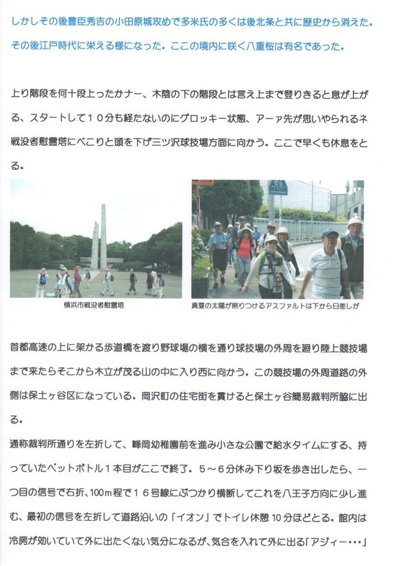 鎌倉街道下道ウォーク5回目活動報告_a0215849_1041490.jpg