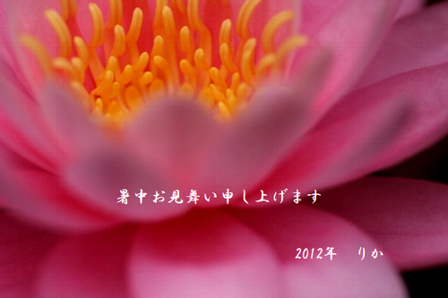 a0081958_19574629.png